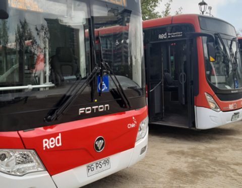 Buses Red